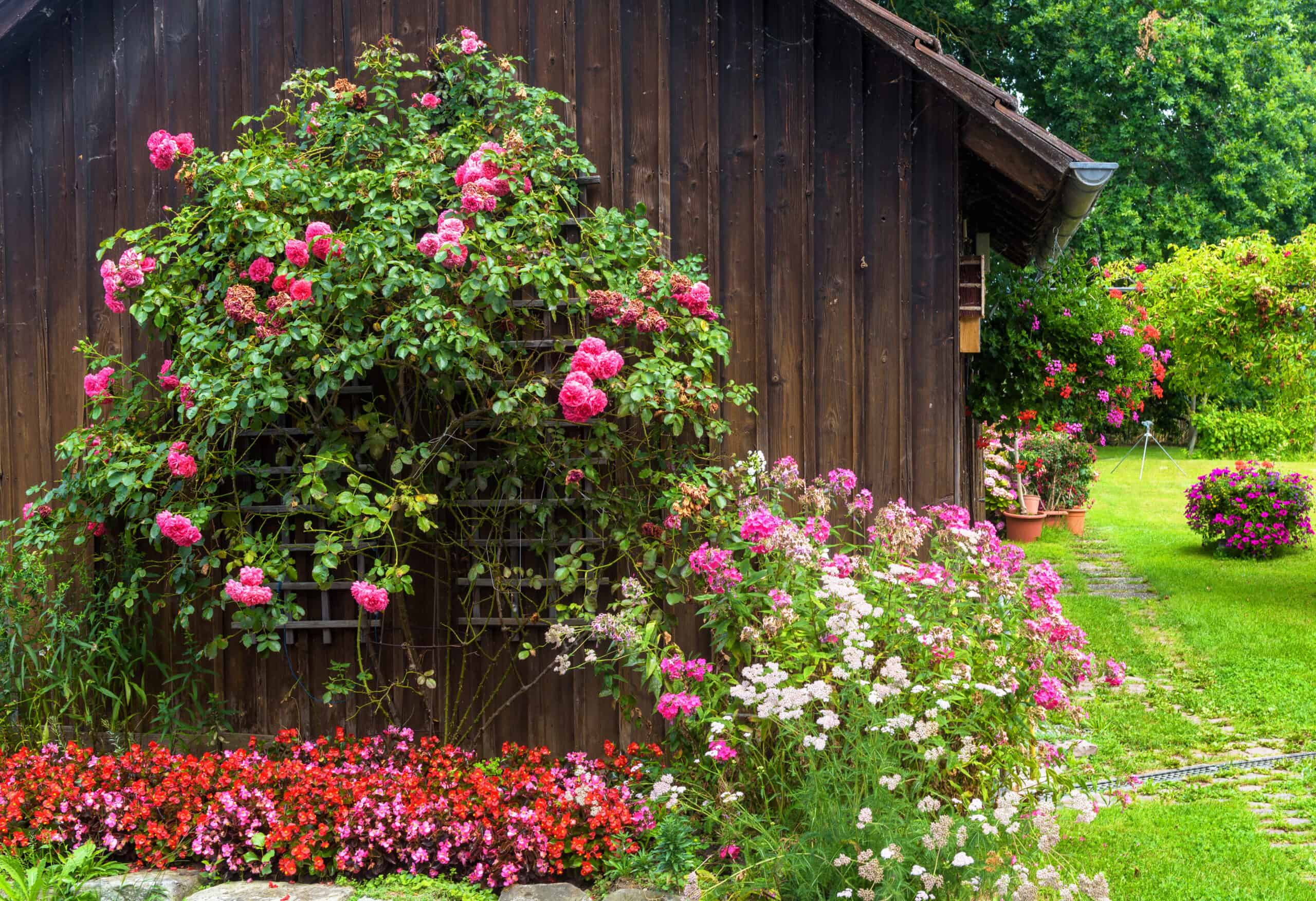 4 EASY WAYS TO FIX LANDSCAPING